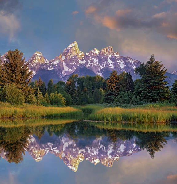 Photograph - Grand Tetons From Schwabacher Landing by