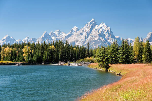 Snake Photograph - Grand Tetons Mountians And The Snake by Skibreck