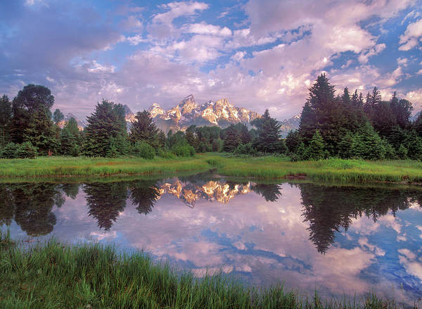 Photograph - Grand Tetons Reflected In Lake, Grand by Tim Fitzharris
