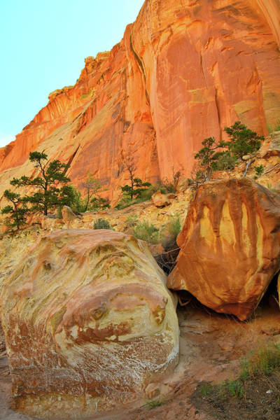 Photograph - Grand Wash Boulders In Capitol Reef Np by Ray Mathis