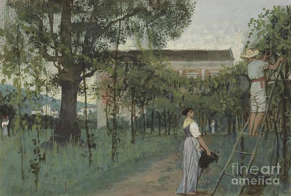 Wall Art - Painting - Grape Picking by Randolph Caldecott