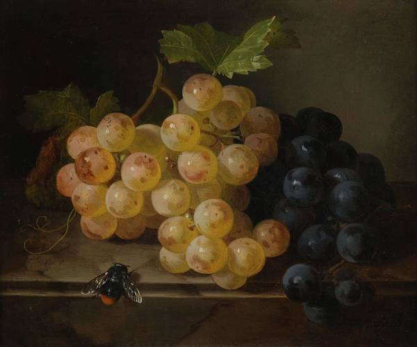 Wall Art - Painting - Grape Still Life With Bumblebee Andreas Lach By Andreas Lach by Andreas Lach