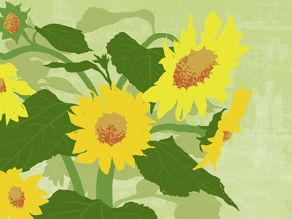 Freshness Digital Art - Graphic Illustration Of Sunflowers by Don Bishop