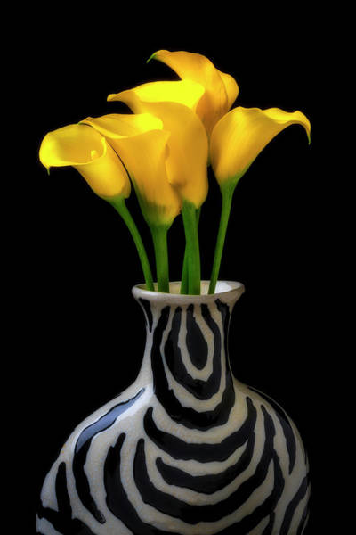 Wall Art - Photograph - Graphic Vase And Calla Lilies by Garry Gay