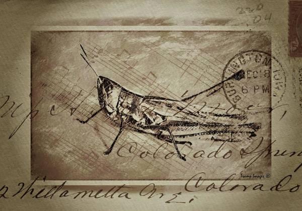 Digital Art - Grasshopper In The Mail by Wesley Nesbitt