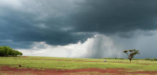 Bangalore Photograph - Grasslands Near Bangalore, India by Win-initiative