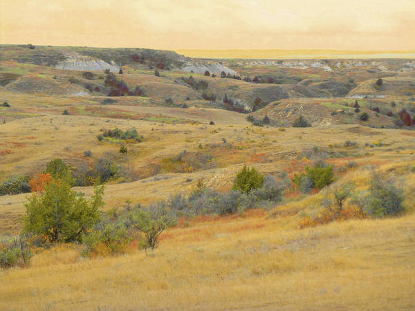 Photograph - Grassy Badlands Reverie by Cris Fulton
