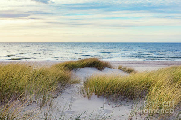 Wall Art - Photograph - Grassy Dunes And The Baltic Sea by Michal Bednarek