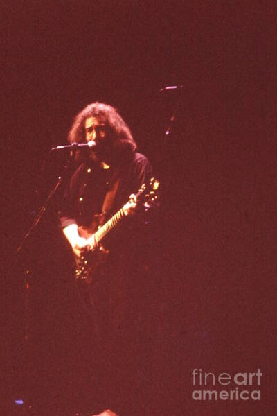 Photograph - Grateful Dead  - It Must Of Been The Roses by Susan Carella