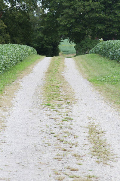 Vertical Perspective Photograph - Gravel Back Road by Jon Schulte