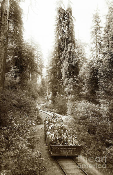Photograph - Gravity Car No. 11 On The Way To Muir Woods. Mount Tamalpais by California Views Archives Mr Pat Hathaway Archives