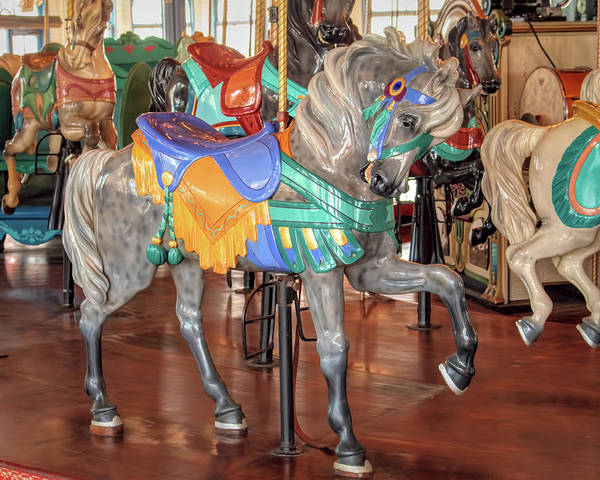 Photograph - Gray Carousel Stander Horse by Kristia Adams