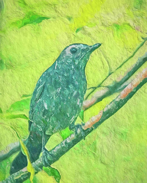 Painting - Gray Catbird On Green by Dan Sproul