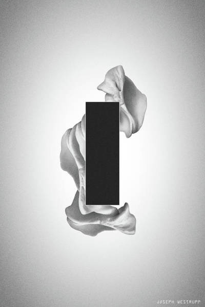 Photograph - Gray Organon - Surreal Abstract Rectangle On Seashell by Joseph Westrupp