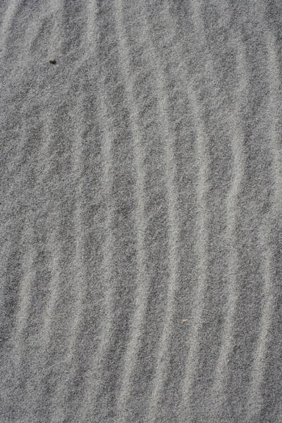 Photograph - Gray Sands by Dylan Punke