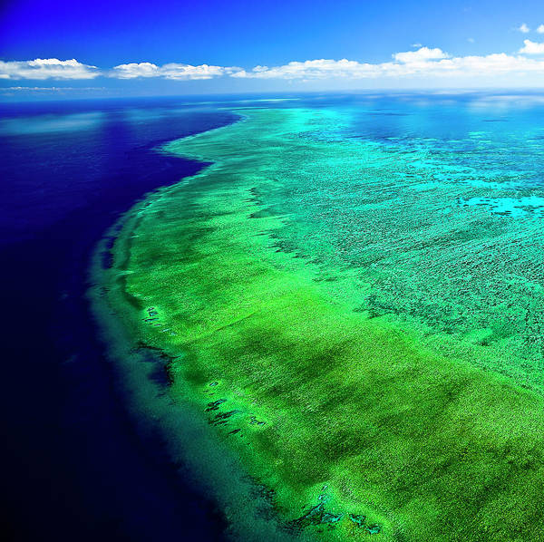 Wall Art - Photograph - Great Barrier Reef From The Sky by Silvia O' Images