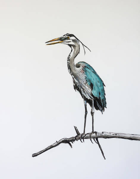 Painting - Great Blue Heron Acrylic Ink 2 by Rick Mosher