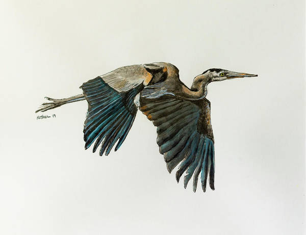 India Ink Wall Art - Photograph - Great Blue Heron Acrylic Ink 4 by Rick Mosher