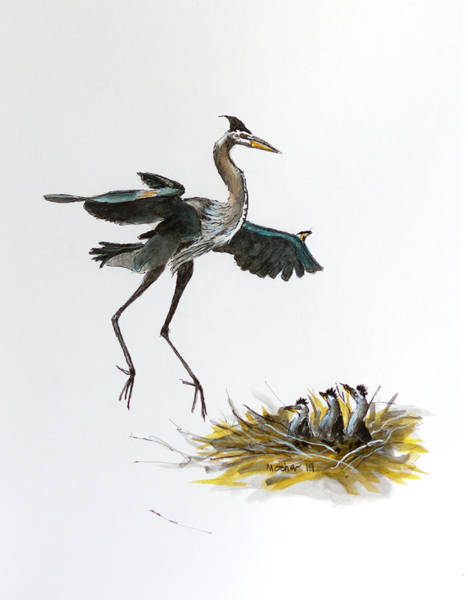 India Ink Wall Art - Painting - Great Blue Heron Acrylic Ink 5 by Rick Mosher