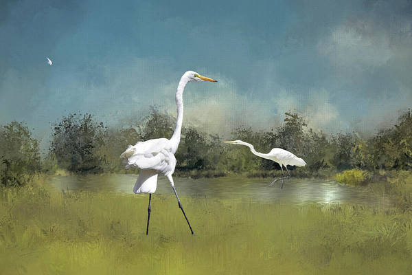 Wall Art - Digital Art - Great Egrets And Loose Feather I  by Linda Brody