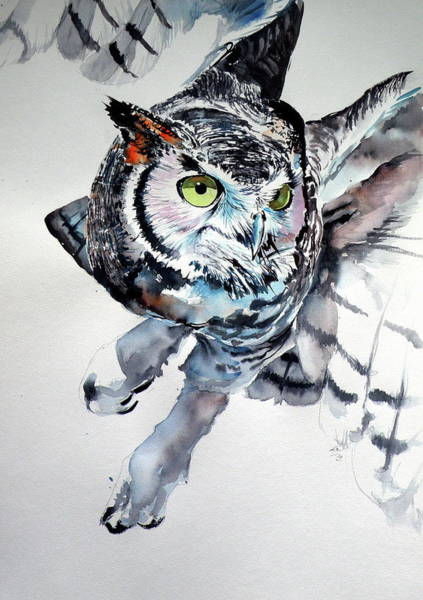 Wall Art - Painting - Great Horned Owl F by Kovacs Anna Brigitta