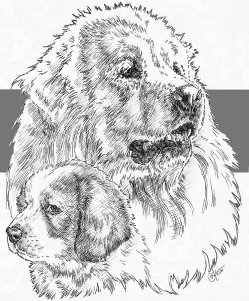 Drawing - Great Pyrenees And Pup by Barbara Keith