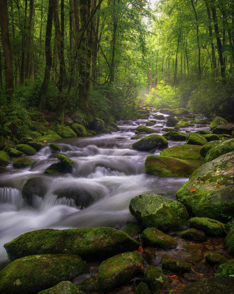 Photograph - Great Smoky Mountains Gatlinburg Tennessee by Mike Koenig