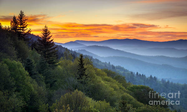 Wall Art - Photograph - Great Smoky Mountains National Park by Dave Allen Photography