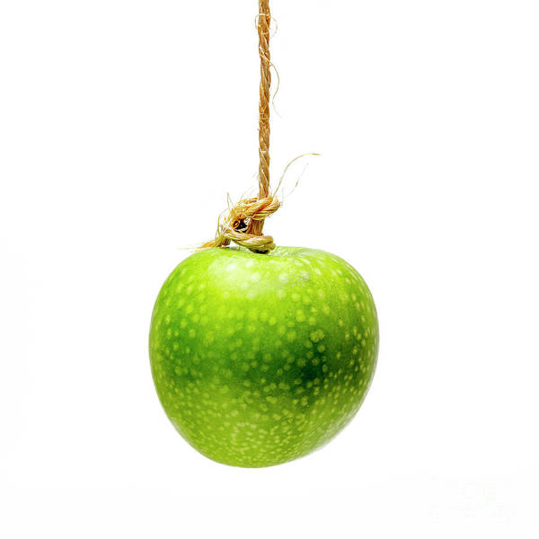 Wall Art - Photograph - Green Apple On A White Background by Bernard Jaubert