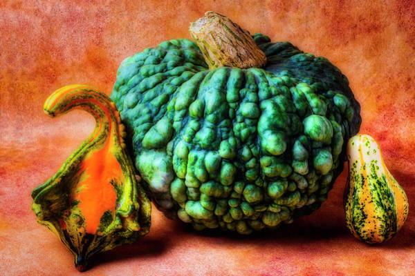 Wall Art - Photograph - Green Autumn Pumpkin by Garry Gay