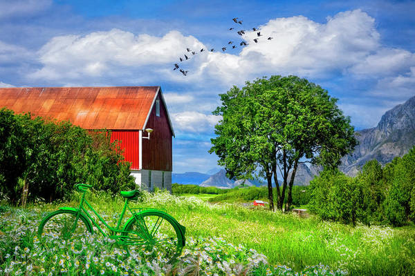 Wall Art - Photograph - Green Bike On The Farm by Debra and Dave Vanderlaan
