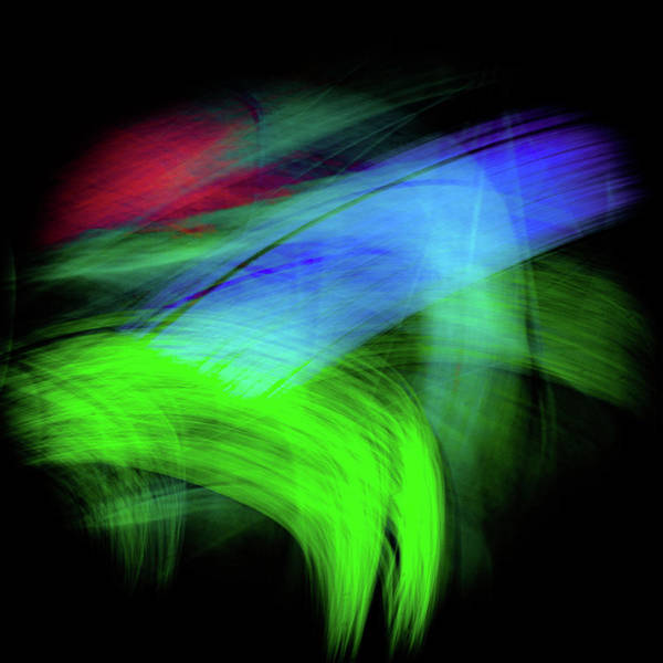 Digital Art - Green Cat by Darryl Dalton