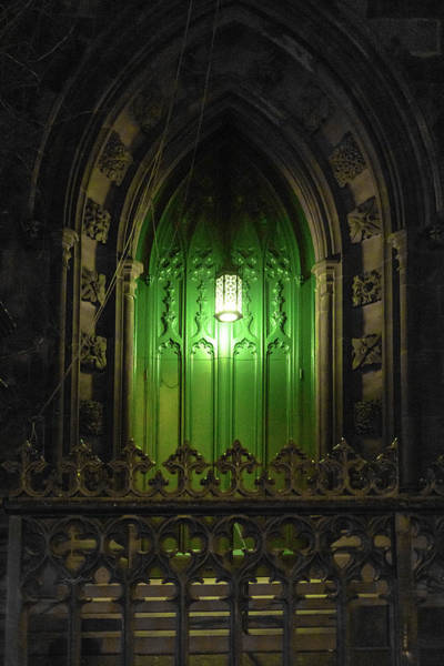 Photograph - Green Door At Night by Sharon Popek