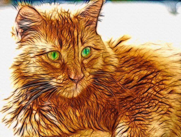 Digital Art - Green Eyed Tabby Cat by Don Northup