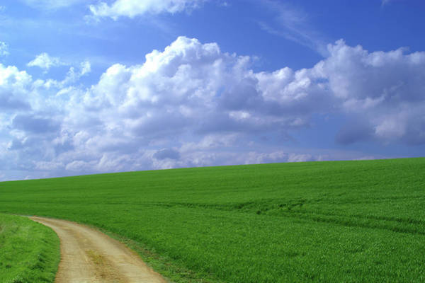 Rutland Photograph - Green Field, Farm Track And Clouds by Gary Colet Photography