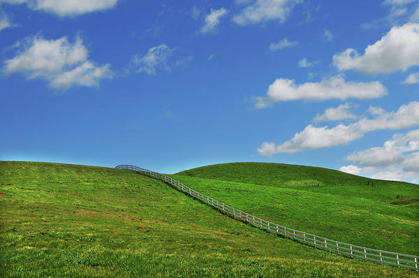 Livermore Wall Art - Photograph - Green Hills And Fence by Mitch Diamond