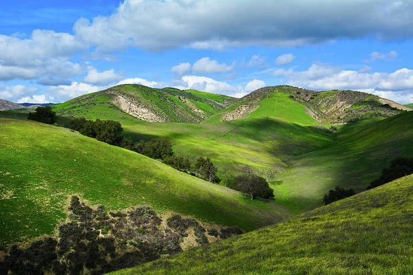 Photograph - Green Hills Santa Monica Mountains by Kyle Hanson