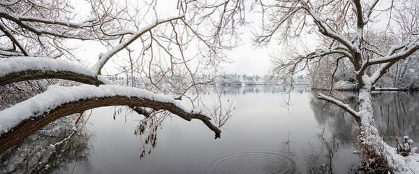 Wall Art - Photograph - Green Lake Branches With Snow by William Dunigan