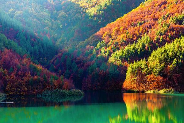 Wall Art - Photograph - Green Lake by Evgeni Dinev