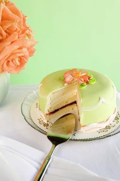 Coral Photograph - Green Marzipan Cake With Missing Slice by Seth Joel