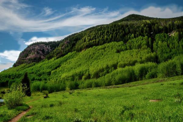 Photograph - Green Mountain Scene Near Vail Colorado by Dan Friend
