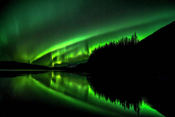 Wall Art - Photograph - Green Northern Lights, Tongass National by John Hyde