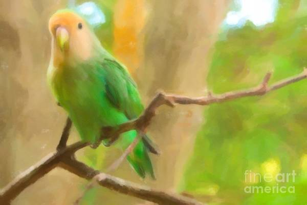 Andrew Jackson Wall Art - Painting - Green Parrot by Andrew Jackson
