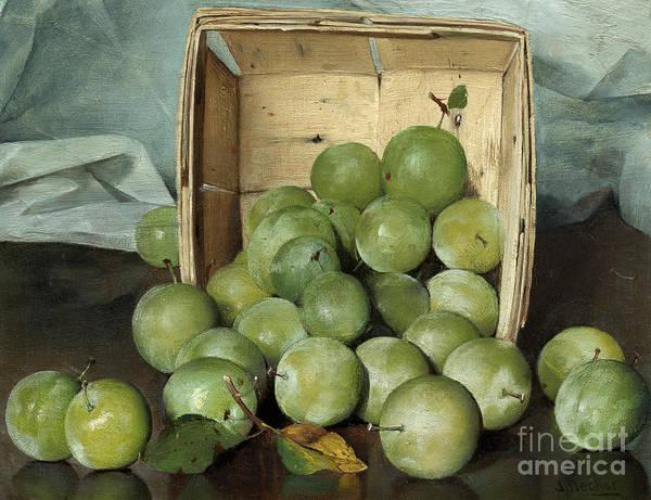 Farmhouse Kitchen Painting - Green Plums, Circa 1885  by Joseph Decker