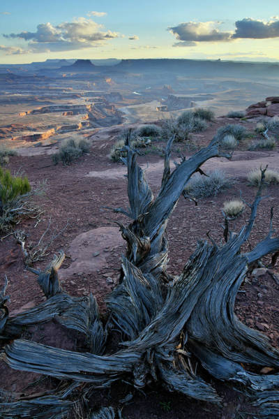 Photograph - Green River From Overlook In Canyonlands Np by Ray Mathis