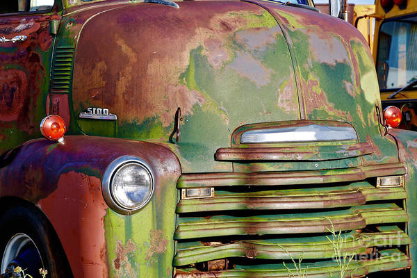 Corrosion Photograph - Green Rusted Grill by American School