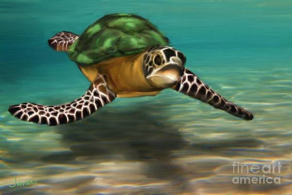 Andrew Jackson Wall Art - Painting - Green Sea Turtle  by Andrew Jackson