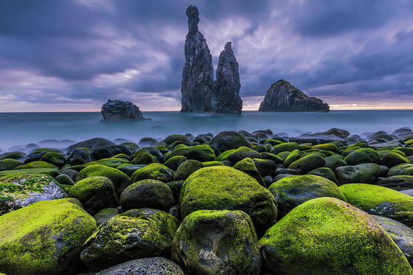 Photograph - Green Stones by Evgeni Dinev