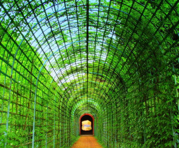 Cage Photograph - Green Tunnel by Ulrich Mueller