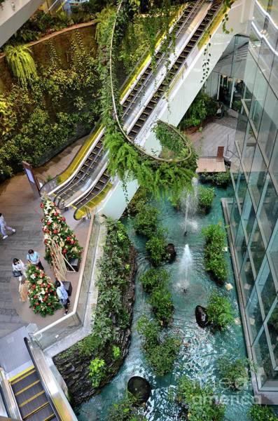Photograph - Green Vertical Interior Design Of Emquartier Shopping Mall Dining Floors Bangkok Thailand by Imran Ahmed